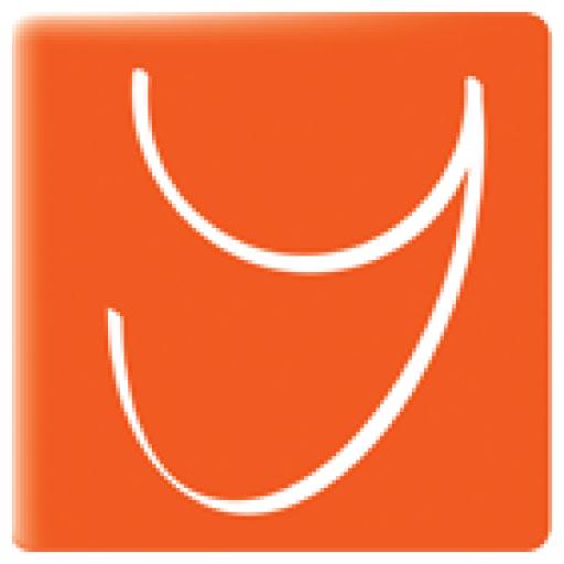 Logo pixels